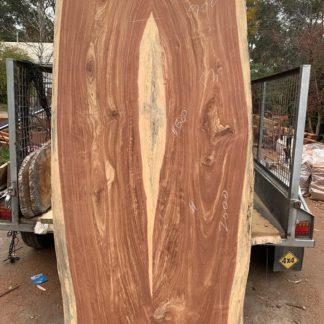 Spotted Gum Slab – Woodpatch House and Garden